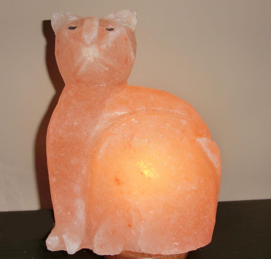 lampada--sale-rosa-gatto